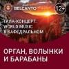 World music в Кафедральном. Орган, волынки и барабаны