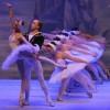 Лебединое озеро. Корона Русского балета