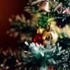Рождественские вечера у органа. Встречаем Рождество