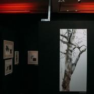 Выставка «Лес / Среда деревьев» фотографии
