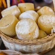 XI Фестиваль сыра на ВДНХ фотографии