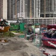 Выставка «Токсичные активы» фотографии