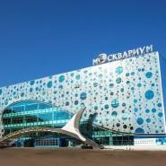 Центр океанографии и морской биологии «Москвариум» фотографии