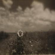 Выставка «Фотограф Николай Андреев. Мастер пикториализма» фотографии