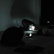 Выставка «Антология саунд-арт галереи Diapason (New-York)» фотографии