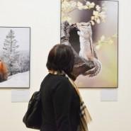 Фестиваль «Первозданная Россия» 2019 фотографии