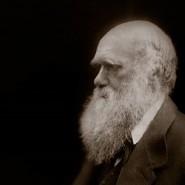Выставка «Дарвин. Жизнь в портретах» фотографии
