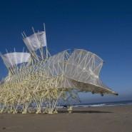 Выставка Тео Янсена «Кинетическая жизнь песчаных пляжей» фотографии
