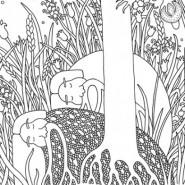 Выставка «Иллюстрации к графическому роману о Сером Волке» фотографии