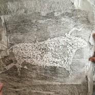 Выставка «Тайны древностей и наскальной живописи Сибири и Дальнего Востока» фотографии