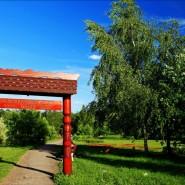 Парк «Битцевский лес» фотографии