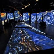 Выставка «Ван Гог. Ожившие полотна 2.0» фотографии