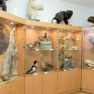 Музей животноводства имени Е.Ф. Лискуна фотографии