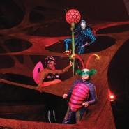 Шоу Cirque duSoleil «OVO» 2018 фотографии