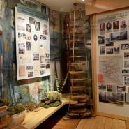 Российский музей леса фотографии