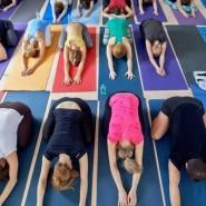 Международный день йоги в Москве фотографии