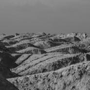 Проект «ВЗЛЕТ. Выставка-прогноз» фотографии