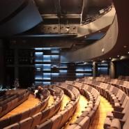 Театр «ГИТИС» фотографии