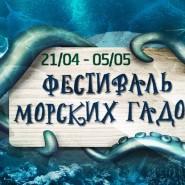 Фестиваль морских гадов фотографии