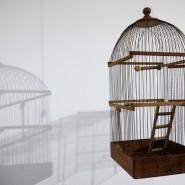 «Выставка одинакового искусства» фотографии