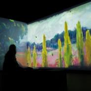 Мультимедийная выставка «От Моне до Малевича. Великие модернисты» фотографии