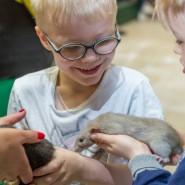 День защиты детей в Дарвиновском музее 2021 фотографии