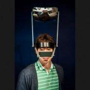 Выставка «Парадоксальные гибриды» фотографии