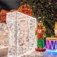 Новогодняя ночь 2019 в парке «Зарядье» фотографии