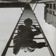Выставка «Опыты для будущего» фотографии