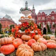 Фестиваль «Золотая осень» 2017 фотографии