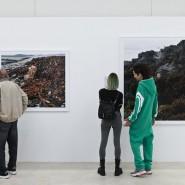 Выставка «Глаза, как блюдца» фотографии