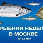 Фестиваль «Рыбная неделя» 2016 фотографии