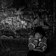Выставка «Боюсь» фотографии