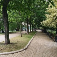 Парк «Новодевичьи пруды» фотографии