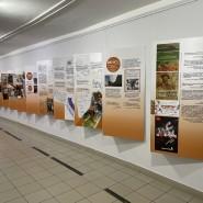 Выставка «Музей: Книга отзывов» фотографии
