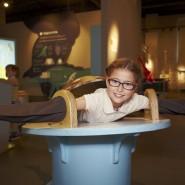 Новый сезон «Остаться в живых» в Музее человека «Живые системы» фотографии