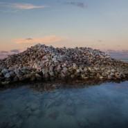 Выставка «Одна планета — общее будущее» фотографии