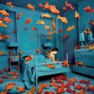 Выставка «Между воображением и реальностью» фотографии