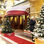 Выставка «Новогодние елки в ГУМе на Красной площади» фотографии