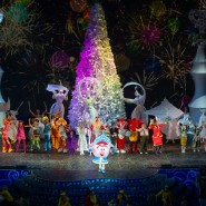 Новогоднее шоу «Главный секрет Деда Мороза» 2018/19 фотографии
