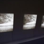 Выставка «Квартет на конец времени» фотографии