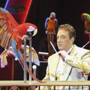 Цирковое шоу «Все будет хорошо!» фотографии