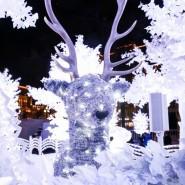 Инсталляция «Музыкальный лес» 2016 фотографии