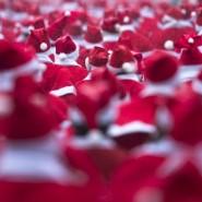 Благотворительный забег Дедов Морозов 2015 фотографии