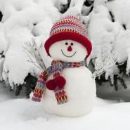Фестиваль снеговиков в парке «Сокольники» 2017 фотографии