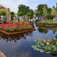 Фестиваль садов и цветов «Moscow Flower Show» фотографии