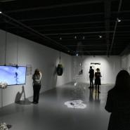 Выставка «20:20. Время остановилось» фотографии