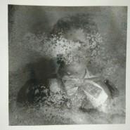 Выставка «Collection BIOMUS» фотографии