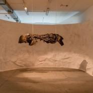 Выставка «Музей искусственной истории» фотографии