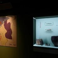 Выставка «Железный век. Европа без границ» фотографии